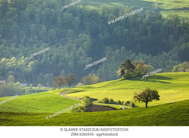 Spring morning in the Swiss countryside, canton Basel-Landschaft