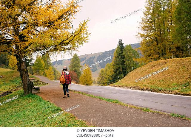 Hiker walking by road, Alpe di Siusi park, Dolomite Alps, South Tyrol, Italy