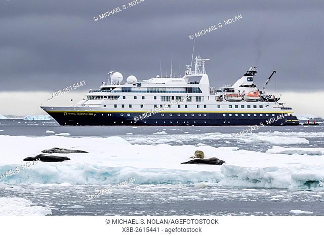 The Lindblad Expeditions ship National Geographic Orion with leopard seals on ice off Brown Bluff, Antarctica