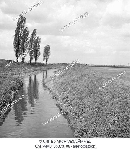 Sommer auf dem Land, Deutschland 1930er Jahre. Summer in the countryside, Germany 1930s