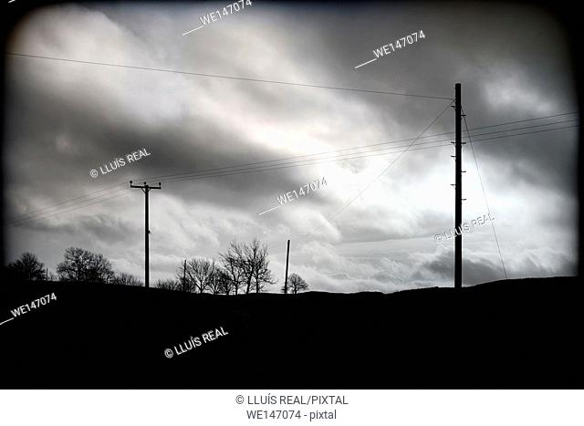 Rural landscape with electric poles and trees with cloudy sky at dusk. North Yorkshire, England, UK
