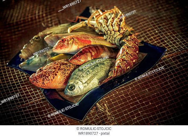 Variety of fresh fish