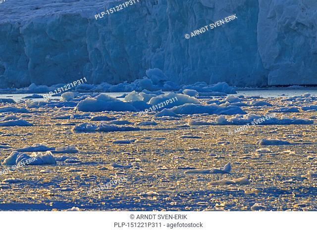 Ice floes calved from the Lilliehöökbreen glacier drifting in the Lilliehöökfjorden, fjord branch of Krossfjorden in Albert I Land, Spitsbergen, Svalbard