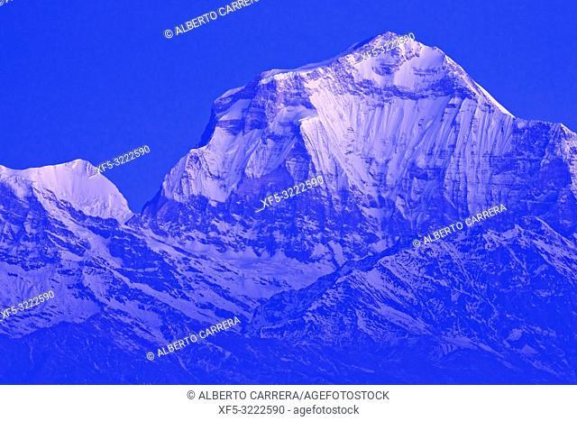 Dhaulagiri Massif, Annapurna Range Sunrise, Poon Hill View Point, Ghorepani, Annapurna Conservation Area, Himalaya, Nepal, Asia