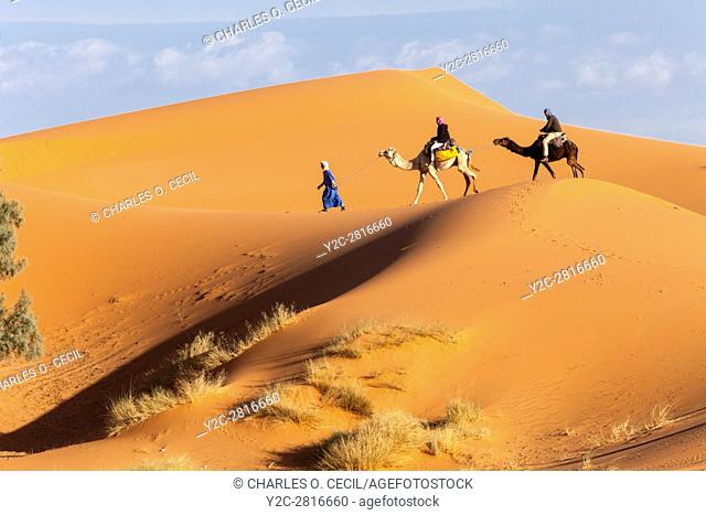 Merzouga, Morocco. Berber Guide Leading Two Tourists on Camels into the Sand Dunes