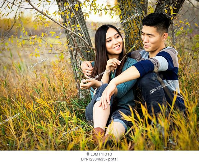 A young Asian couple enjoying a romantic time together and sitting under a tree in a park in autumn and she is tickling his nose with a blade of grass; Edmonton