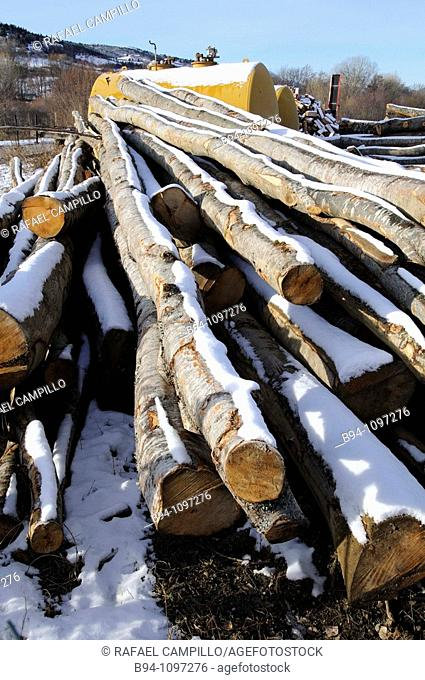 Snow-covered logs. Osseja, Languedoc-Roussillon, Pyrenees Orientales, France