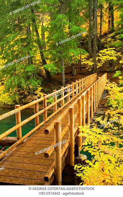 Hiker bridge on Clear Lake Trail, McKenzie Pass-Santiam Pass National Scenic Byway, Willamette National Forest, Oregon