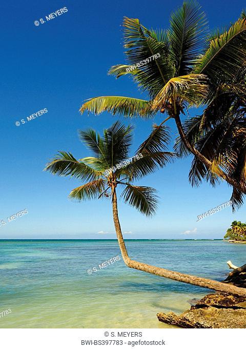 Bay of Samana, Las Galeras, Dominican Republic, Samana