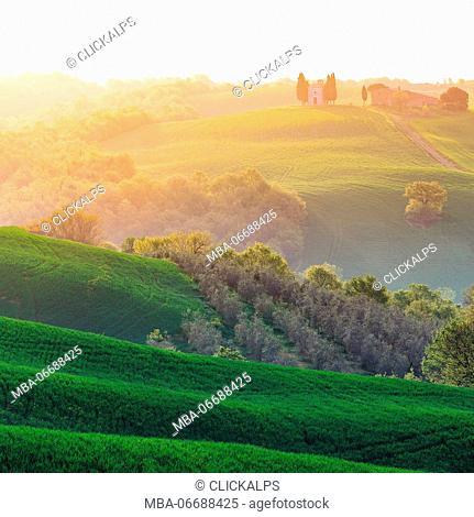 Tuscany, Val d'Orcia. Italy