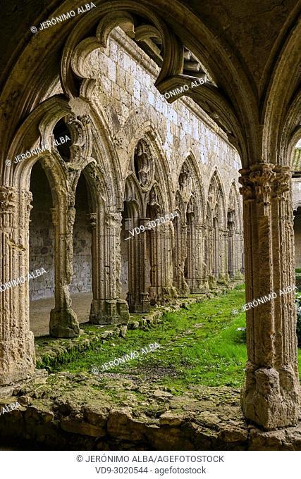 Collegiate Saint-Pierre, cloister. Village of La Romieu on the way of Saint Jacques de Compostelle. Le Gers Department, New Aquitaine, Midi Pyerenees