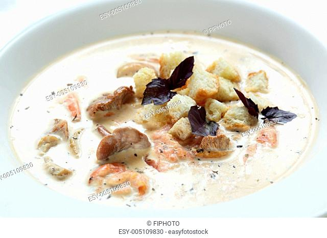 Soup in the white dish