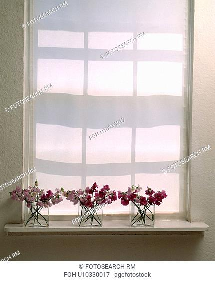 Sweetpeas arranged in three square glass vases in front of white roller blind