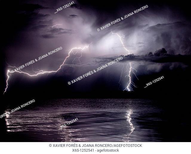 Lightning in Illa de Buda, Natural Park of Delta de l'Ebre, Tarragona, Spain