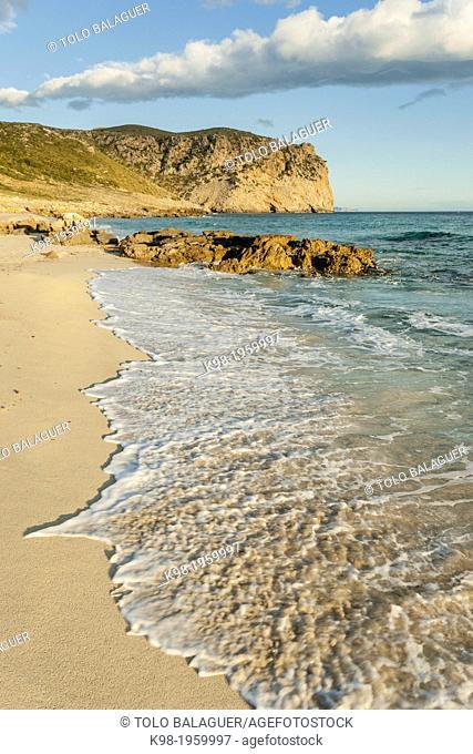 Albarca sand, - arenalet des Verger-, Llevant Natural Park, Artà. Mallorca, Balearic Islands, Spain