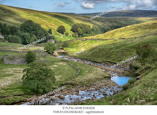 View of river, drystone walls and stone barn, River Swale, near Keld, Swaledale, Yorkshire Dales N.P., North Yorkshire, England, September