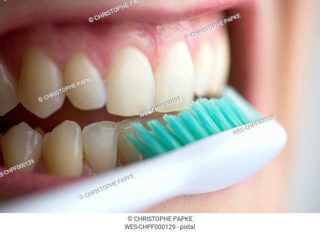 Toothbrush on teeth