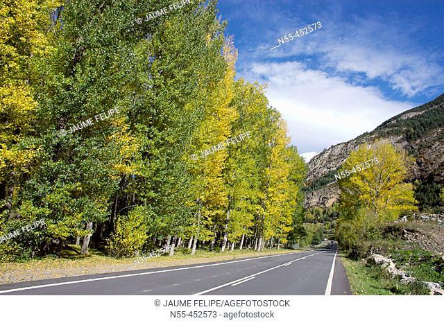 Road Benasque-Cerler, Benasque Valley. Huesca province, Aragón. Spain