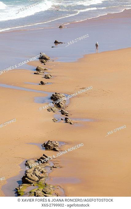 Natural Park of the Dunes of Liencres, Liencres, Cantabria, Spain