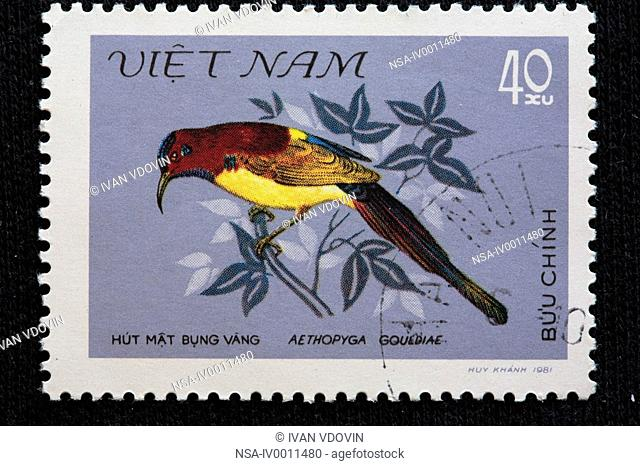 Gould's Sunbird Aethopyga gouldiae, postage stamp, Vietnam, 1981