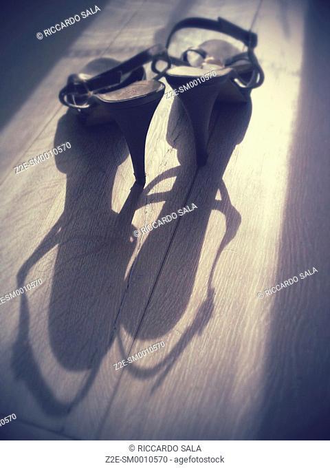 Woman's High Heel Shoe on a Parquet Floor