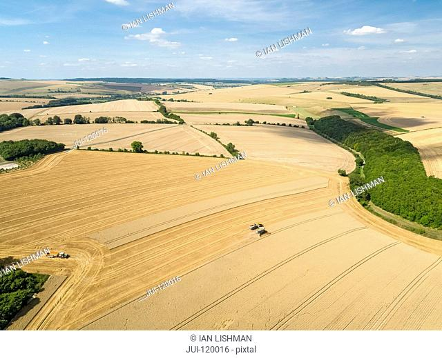 Harvest aerial landscape of combine harvester cutting summer wheat field farm crop tractor trailer and blue sky