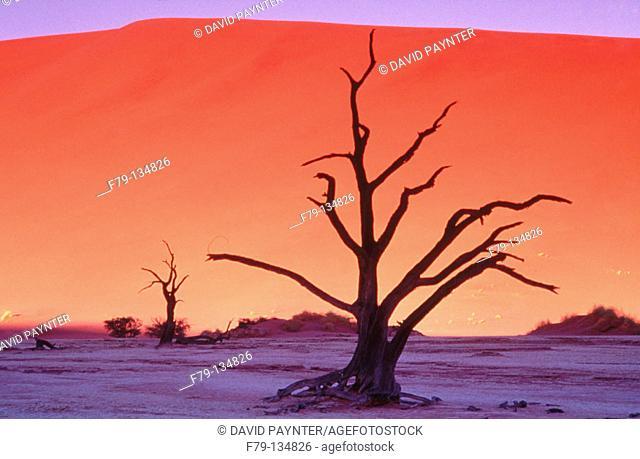 Sossusvlei dunes. Namib-Naukluft Park. Namibia