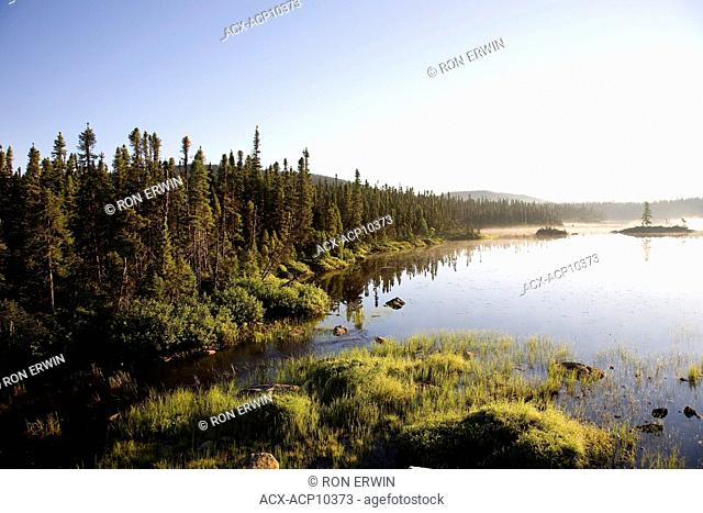 Boreal forest and wetlands north of Port Hope Simpson on Route 510, Labrador, Newfoundland and Labrador, Canada