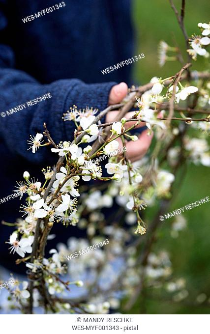 Girl holding flowering wreath of cherry plum