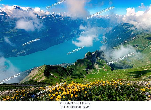 Elevated view of river through valley, Brienzer Rothorn, Bernese Oberland, Switzerland