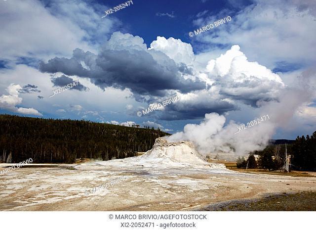 Castle Geyser, Yellowstone National Park, Wyoming, USA