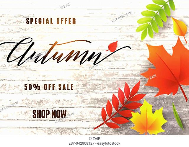 Vector illustration of fashion autumn sale banner with wood tree texture, text sign 50 percent off, falling multicolor leaves rowan, maple, birch, willow