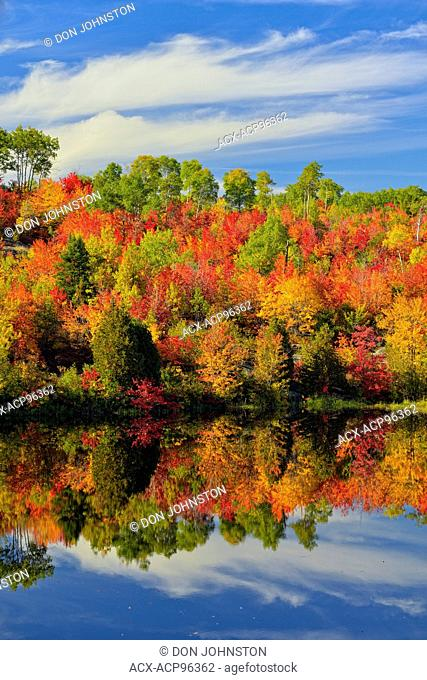 Autumn foliage reflected in the Vermilion River, Greater Sudbury, Ontario, Canada