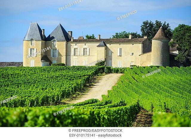 Vineyard and Chateau d'Yquem, Sauternes Region, Aquitaine, France