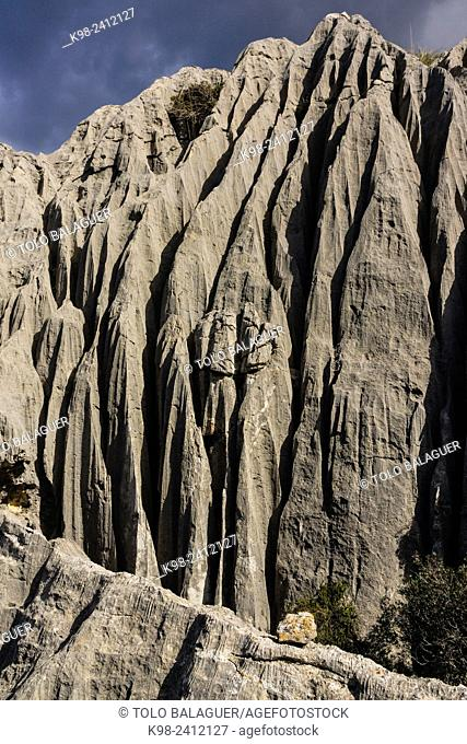 Relieve kárstico, Mortix publishes estate, natural setting of the Sierra de Tramuntana, Majorca, Balearic Islands, Spain