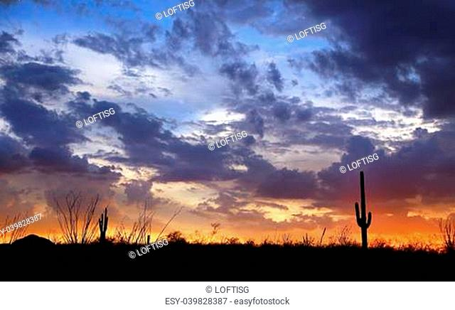 Arizona Sunset near Tucson Az