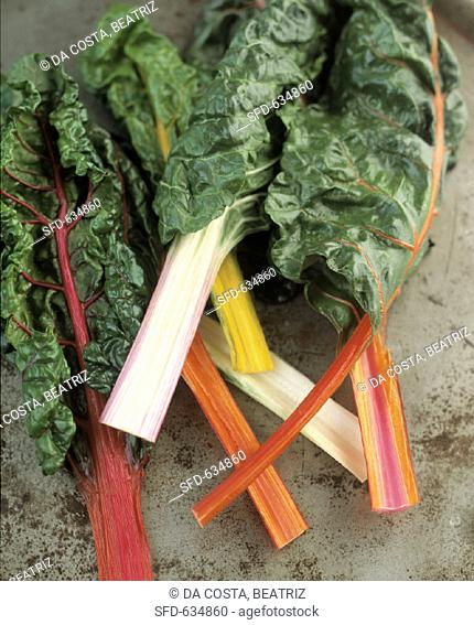 Swiss Chard with Assorted Colored Stalks