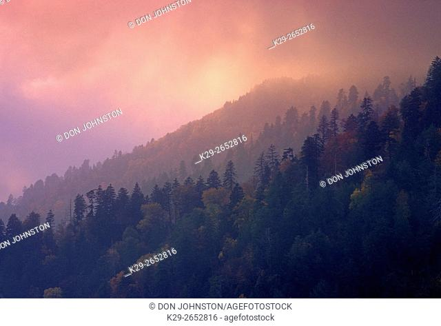 Misty ridges and autumn foliage from Mortons Overlook, Great Smoky Mountains National Park, Tennessee, USA