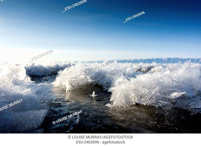 Frost flowers are formed on thin sea ice when the atmosphere is much colder than the underlying ice. a temperature difference between the ice surface and the...