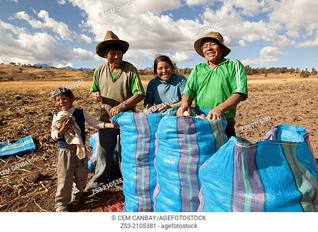 Indigenous people of Sacred Valley with potato sacks, Cusco, Peru, South America