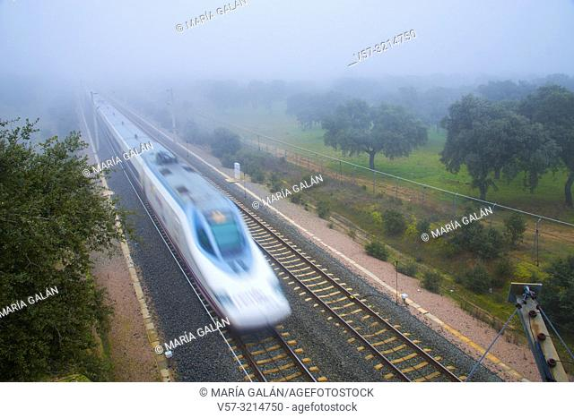 AVE high-speed train traveling in the mist. Los Pedroches valley, Cordoba, Spain