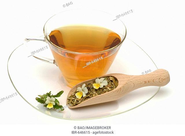 Heartsease, Heart's Ease or Wild Pansy (Viola tricolor), medicinal tea