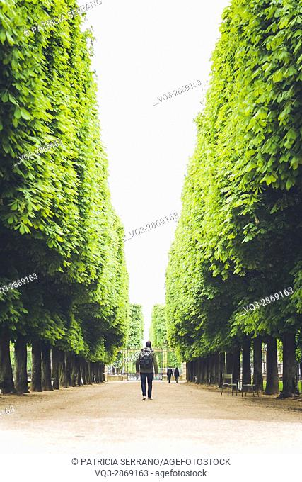 hombre en los jardines de luxemburgo, paris, francia