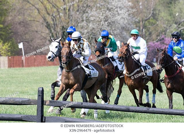 Jockeys contend for prime position approaching a hurdle in Monkton Maryland USA