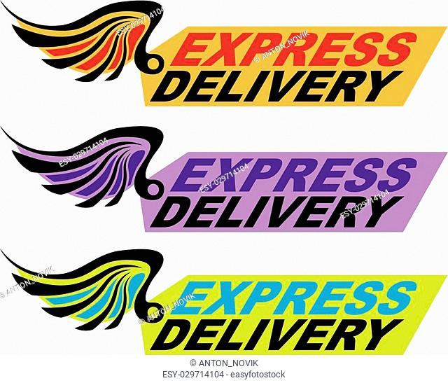 Express delivery sign with a wing Vector