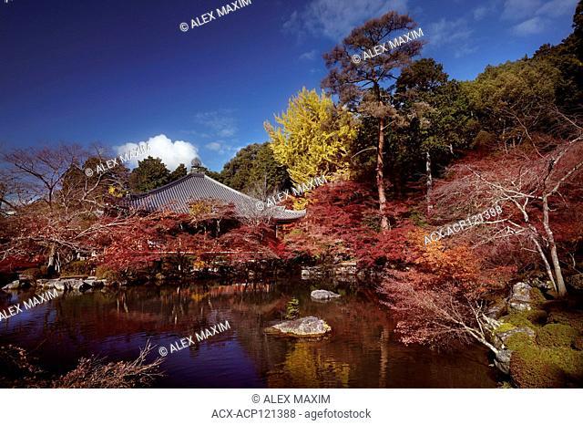 Daikodo hall with a pond at Daigo-ji temple, Shimo-Daigo part of Daigoji complex in colorful autumn nature scenery. Shingon Buddhist temple in Fushimi-ku, Kyoto