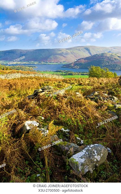 Ullswater, Barton Fell and Hallin Fell from Gowbarrow Park in the Lake District Park, Cumbria, England