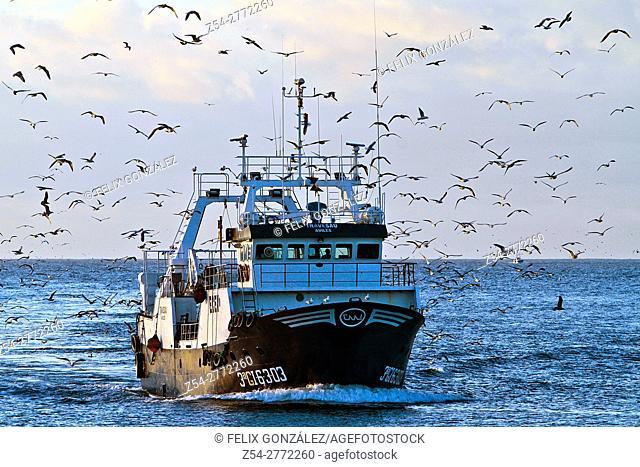 Fishing boat at seagulls in Aviles estuary, Asturias, Spain