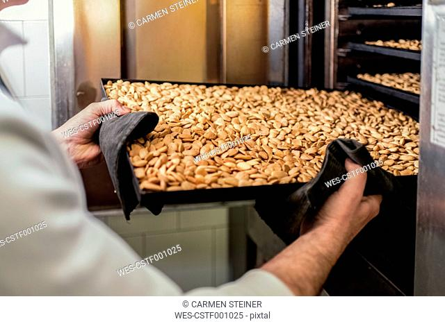 Italy, Manufacturing of traditional torrone in confectionery shop, roasted almonds on tray