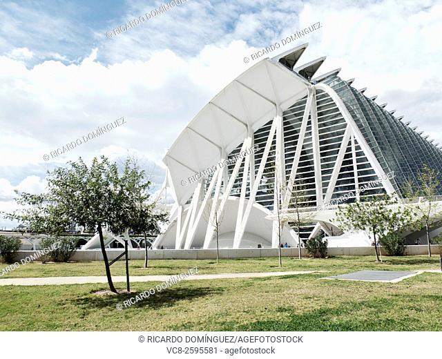 Museum of Sciences Prince Philip, made by Santiago Calatrava. Valencia, Spain